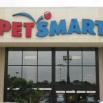 Curious About the Pet Smart Puppy Training Program?