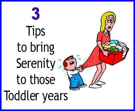 toddler tips2