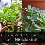I Grow with my Family (and Miracle Gro)! #GrowSomethingGreater