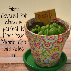Fabric Covered Pot which is perfect to Plant Your Miracle Gro Gro-ables In!