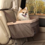 5 Must-Have Dog Travel Accessories