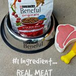 The #1 Ingredient is Real Meat: Beneful's New Dry Dog Recipe