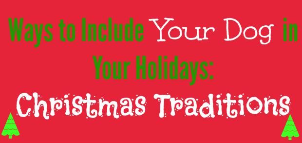 christmas-traditions-dog