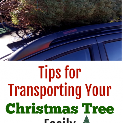 Tips for transporting Your Christmas tree Easily